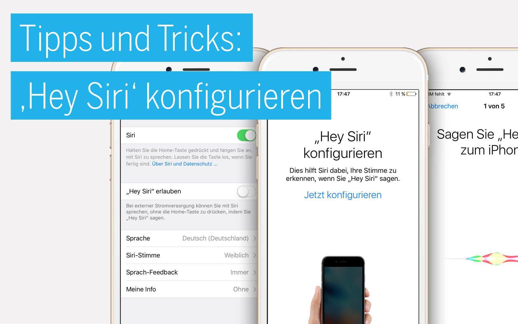 iphone tipps und tricks siri an eigene stimme gew hnen idoc. Black Bedroom Furniture Sets. Home Design Ideas